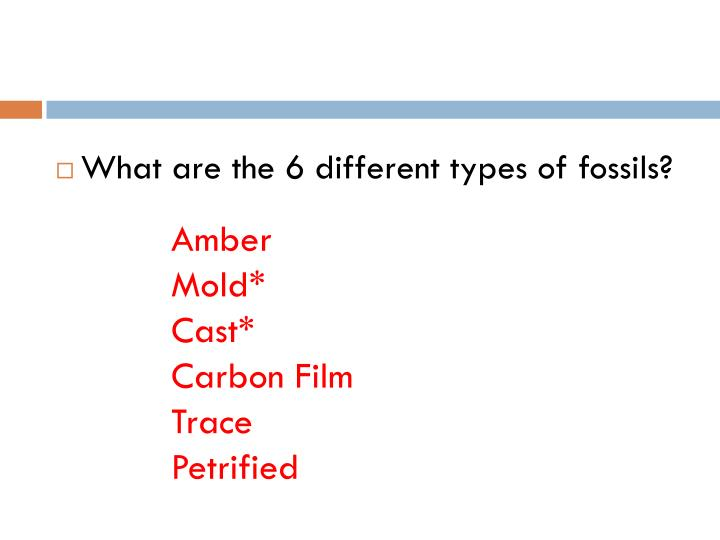What are the 6 different types of fossils?
