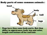body parts of some common animals