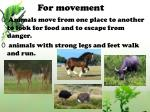 for movement