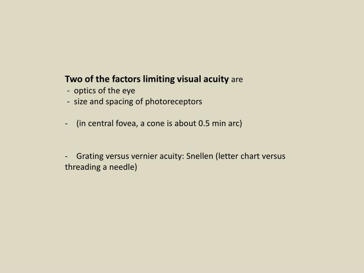 Two of the factors limiting visual acuity