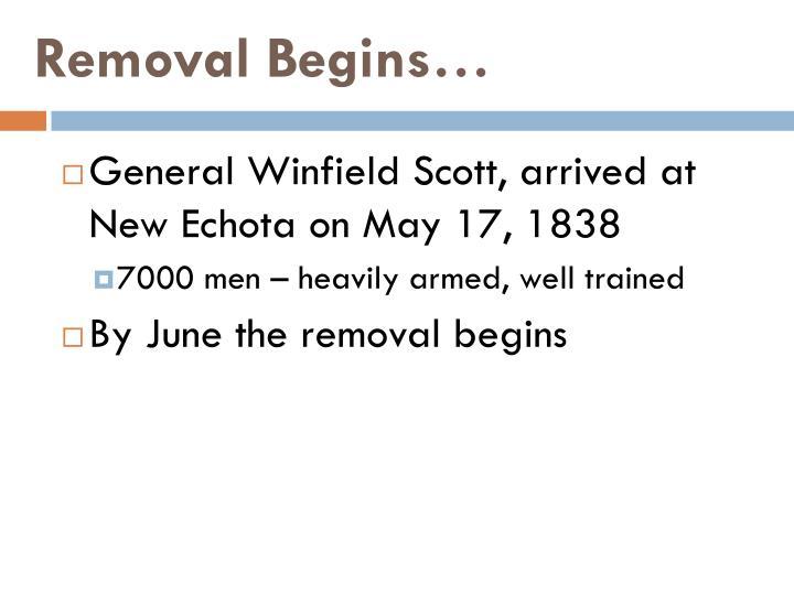 Removal Begins…