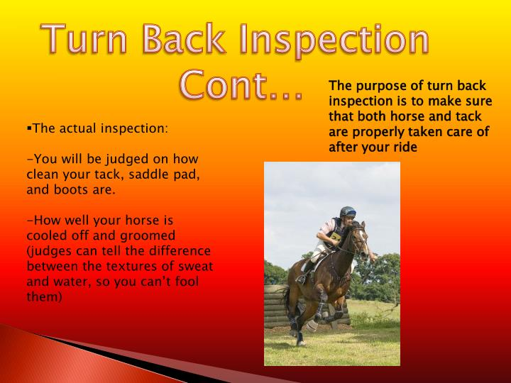 Turn Back Inspection