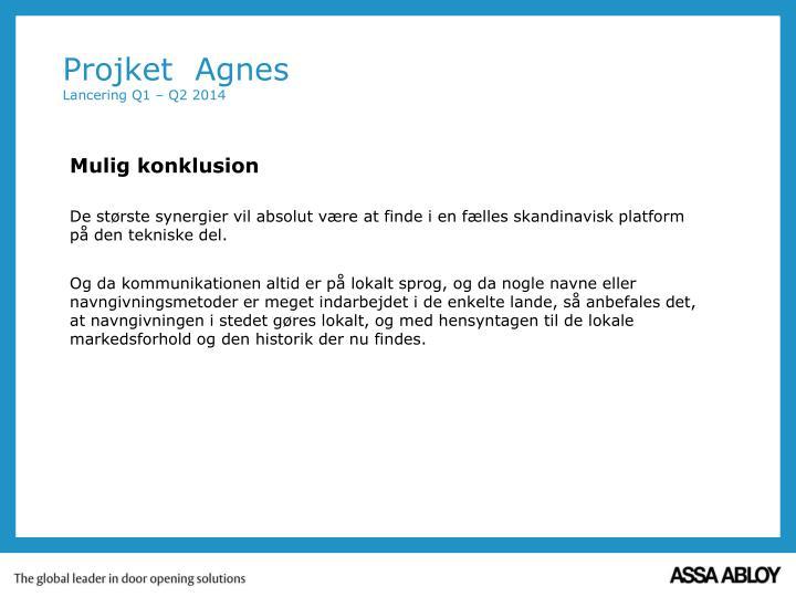 Projket agnes lancering q1 q2 20142
