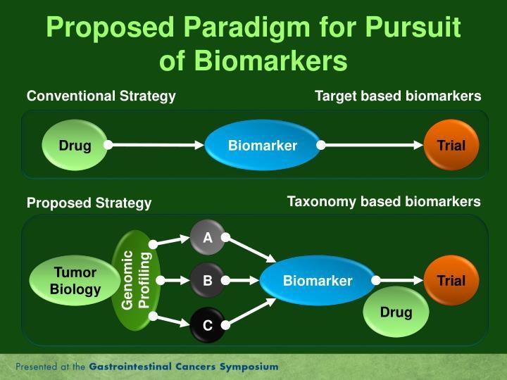 Proposed Paradigm for Pursuit