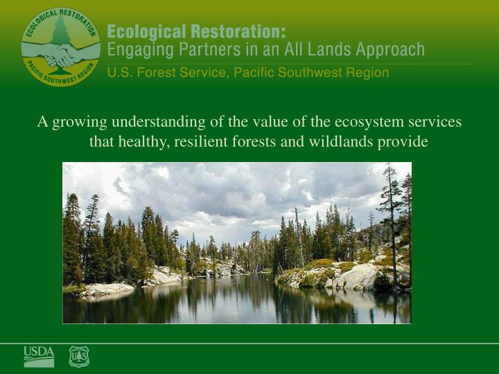 A growing understanding of the value of the ecosystem services that healthy, resilient forests and