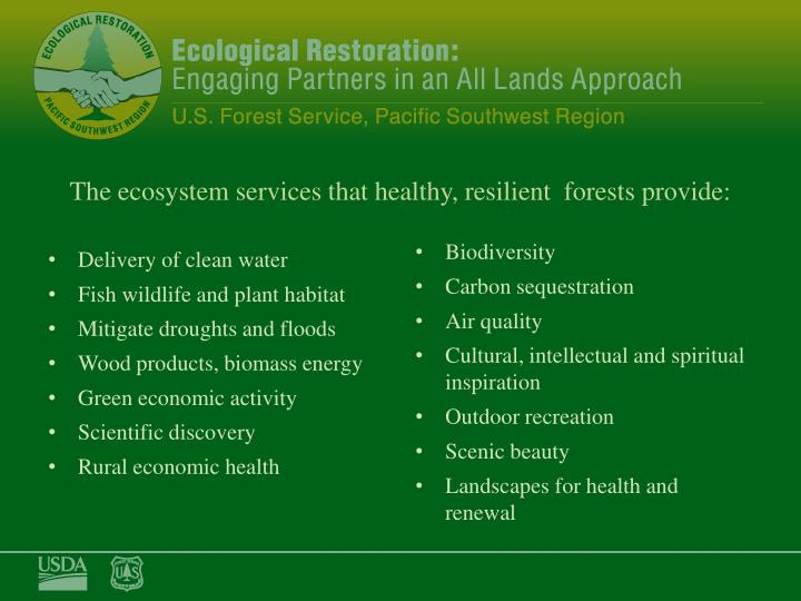The ecosystem services that healthy, resilient  forests provide:
