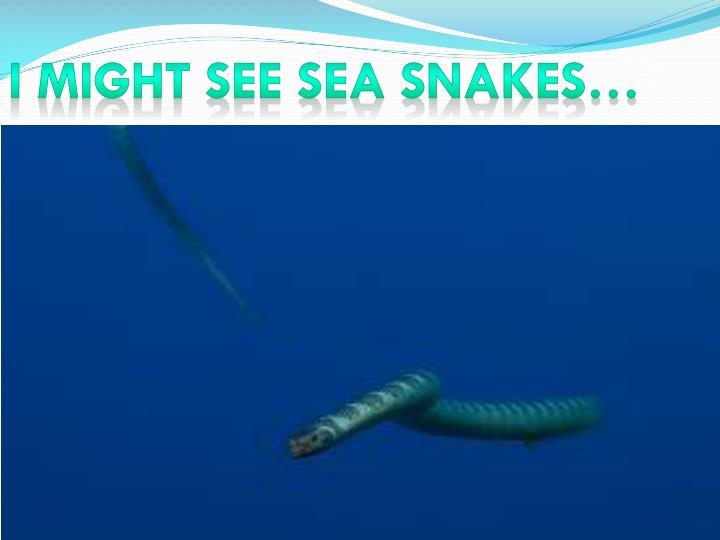 I MIGHT SEE SEA SNAKES…
