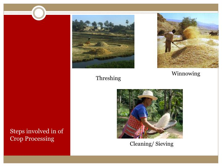 Steps involved in of Crop Processing