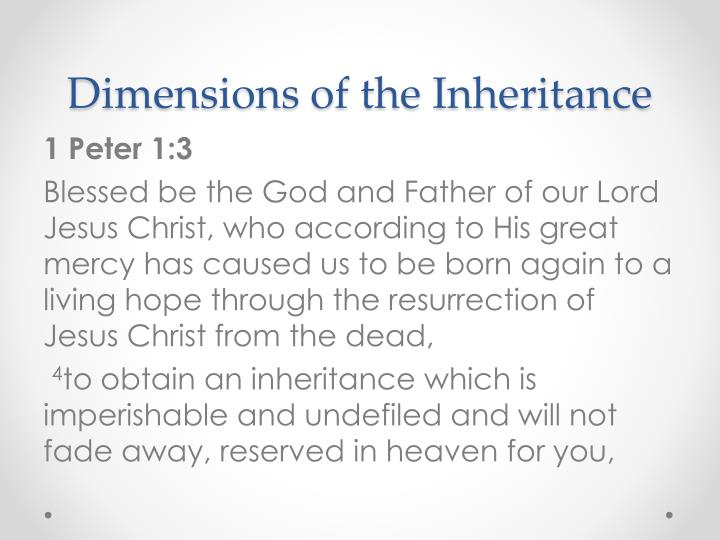 Dimensions of the Inheritance