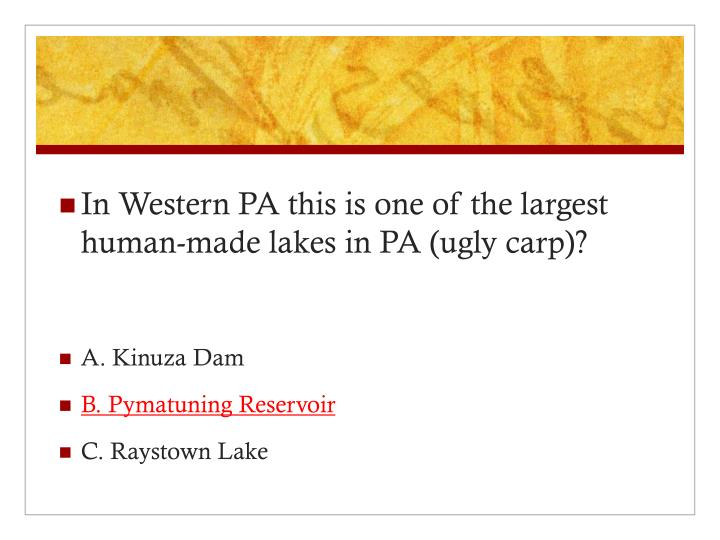 In Western PA this is one of the largest human-made lakes in PA (ugly carp)?