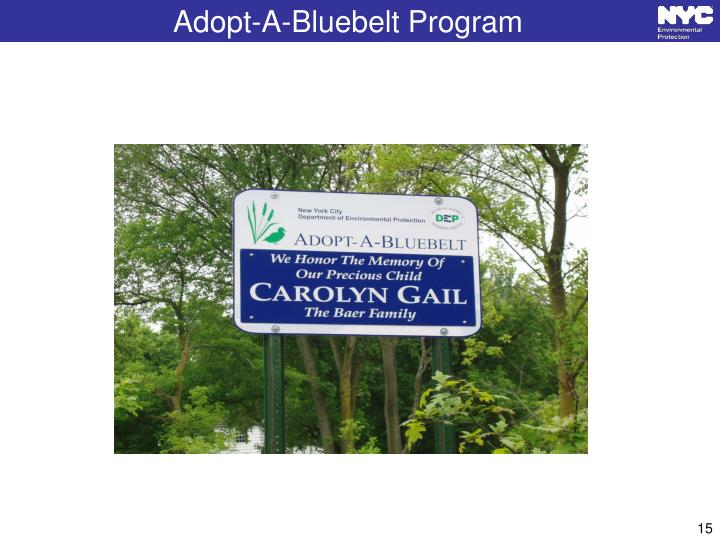 Adopt-A-Bluebelt Program