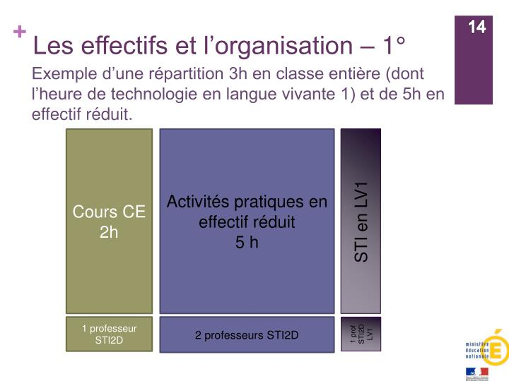 Les effectifs et l'organisation – 1°