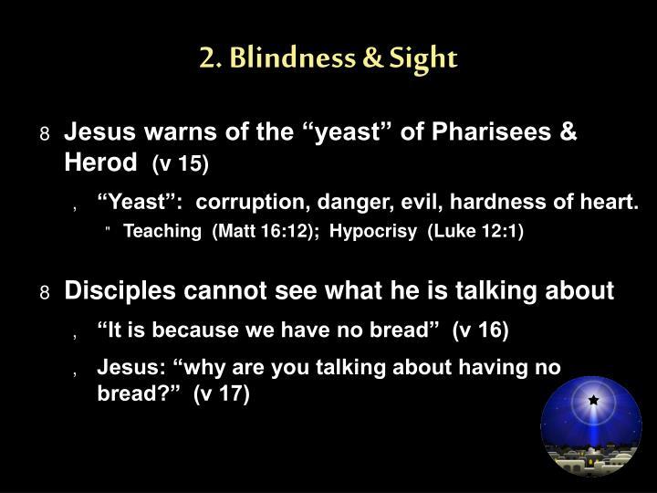 2. Blindness & Sight