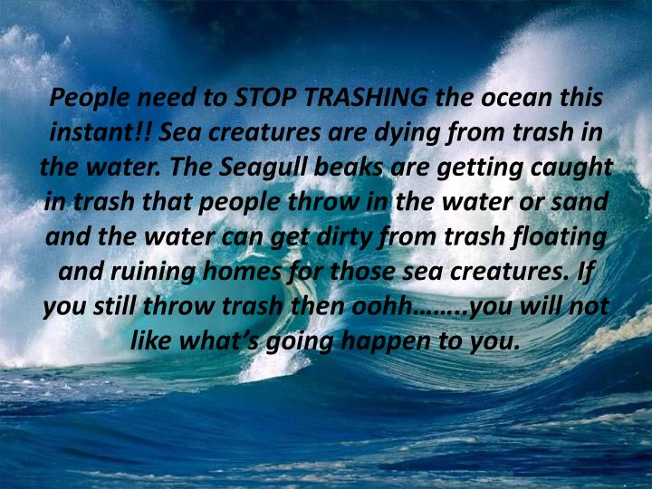People need to STOP TRASHING the ocean this instant!! Sea creatures are dying from trash in the water. The Seagull beaks are getting caught in trash that people throw in the water or sand and the water can get dirty from trash floating and ruining homes for those sea creatures. If you still throw trash then