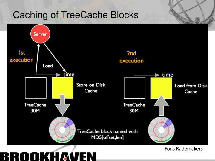 Caching of TreeCache Blocks