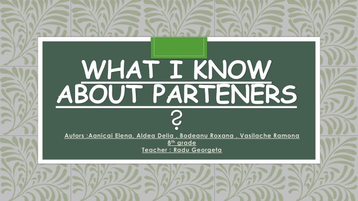 What i know about parteners