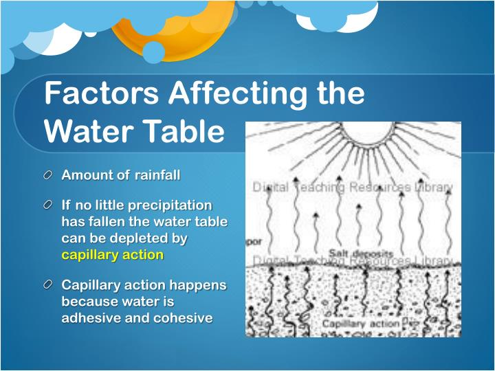 Factors Affecting the Water Table