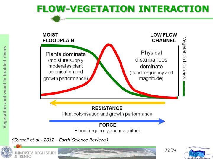 FLOW-VEGETATION