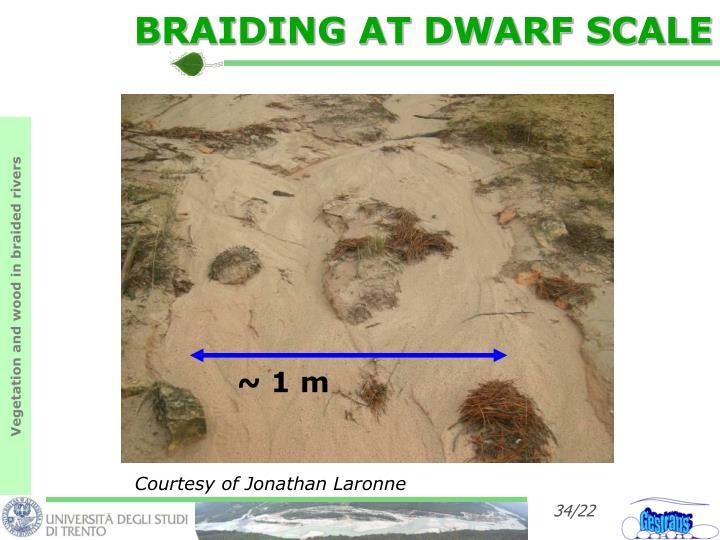 BRAIDING AT DWARF SCALE