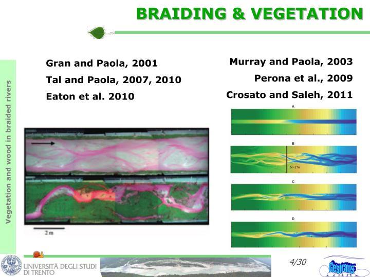 BRAIDING & VEGETATION