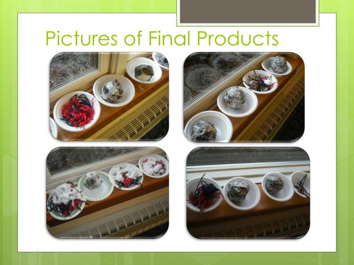 Pictures of Final Products