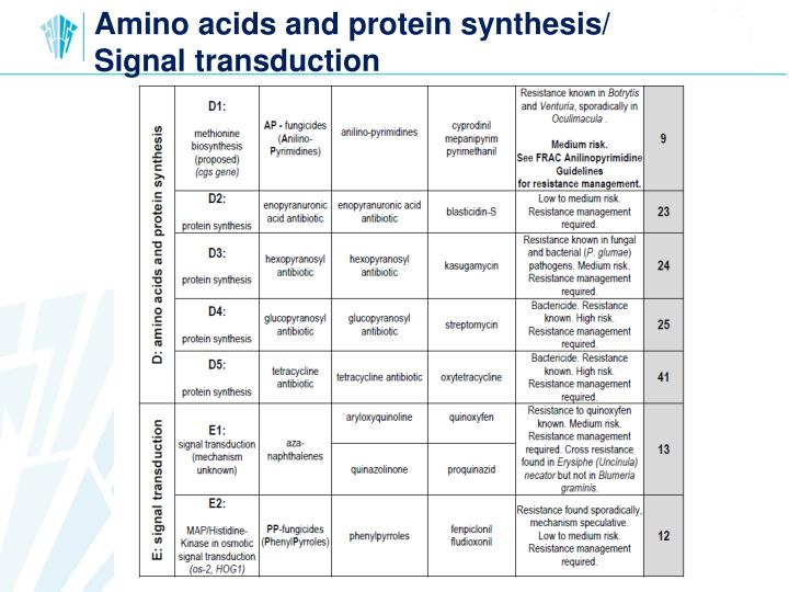 Amino acids and protein synthesis/