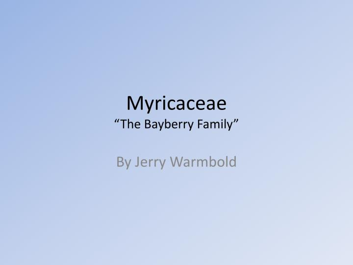 Myricaceae the bayberry family
