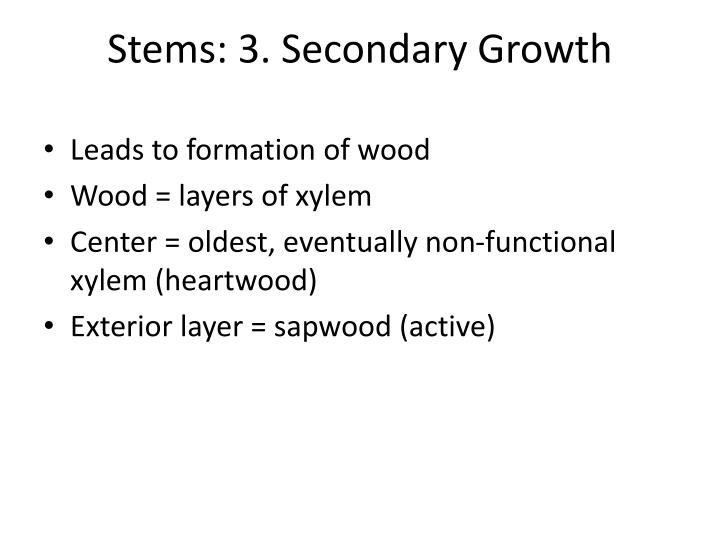 Stems: 3. Secondary Growth