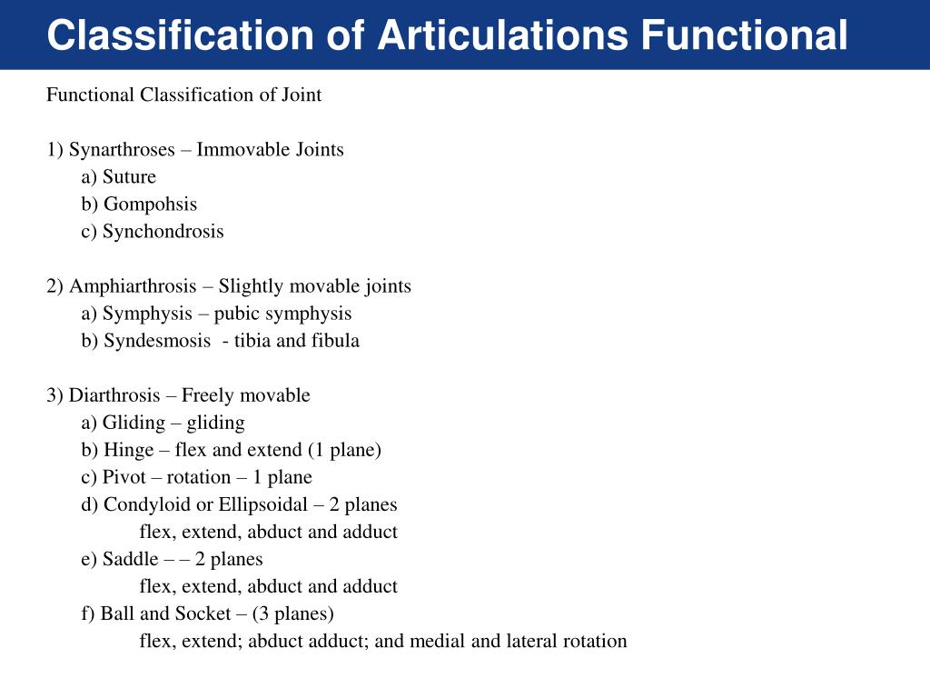 Ppt Articulations Powerpoint Presentation Free Download Id 2167770 Joints or articulations (connections between bones) can be classified in a number of ways. ppt articulations powerpoint