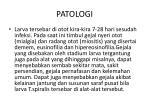 patologi6