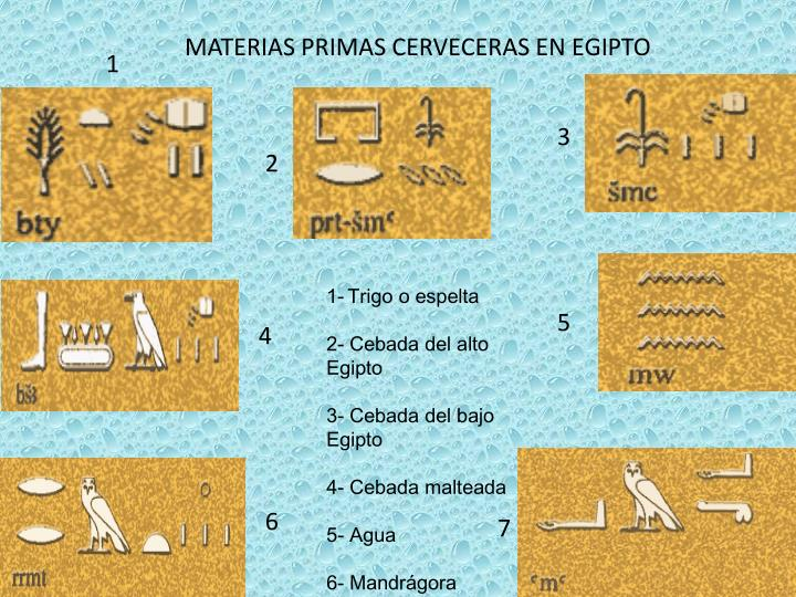 MATERIAS PRIMAS CERVECERAS EN EGIPTO