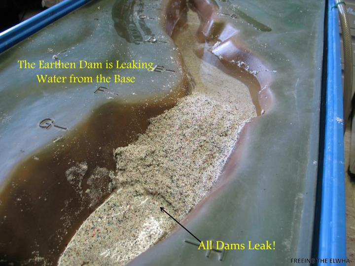 The earthen dam is leaking water from the base