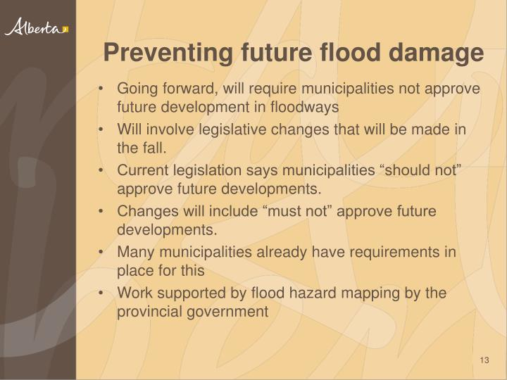 Preventing future flood damage