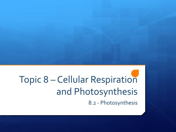 Topic 8 cellular respiration and photosynthesis