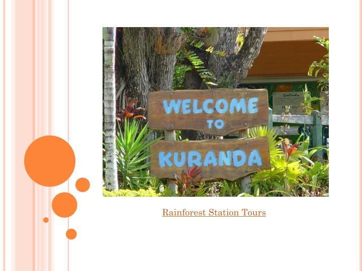Rainforest Station Tours