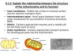8 1 6 explain the relationship between the structure of the mitochondria and its function