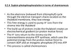 8 2 4 explain photophosphorylation in terms of chemiosmosis