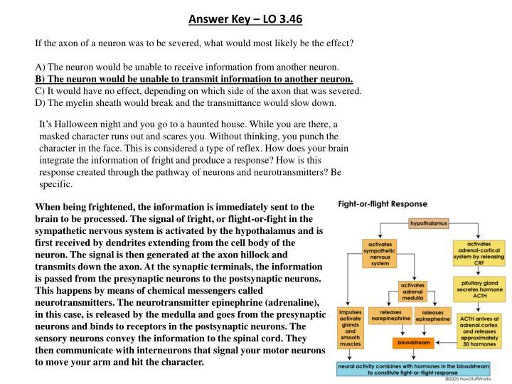 Answer Key – LO 3.46
