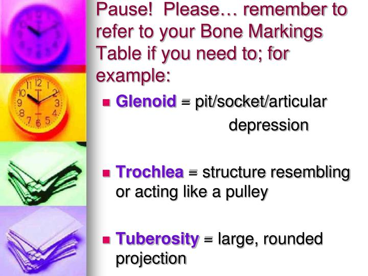 Pause!  Please… remember to refer to your Bone Markings Table if you need to; for example: