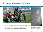expert mechanic woody1
