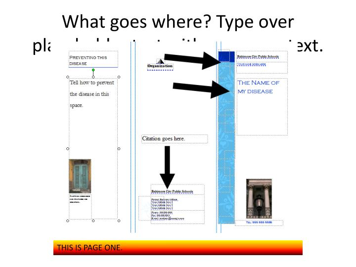 What goes where? Type over placeholder text with your own text.