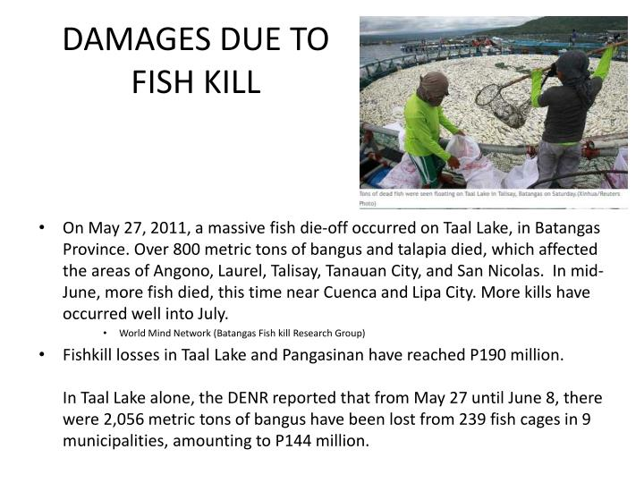 DAMAGES DUE TO FISH KILL