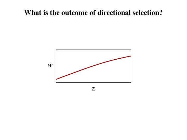 What is the outcome of directional selection?