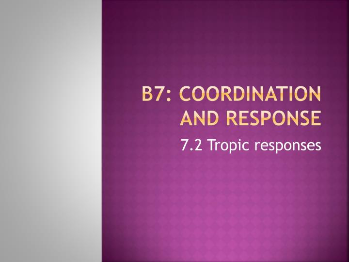b7 coordination and response n.
