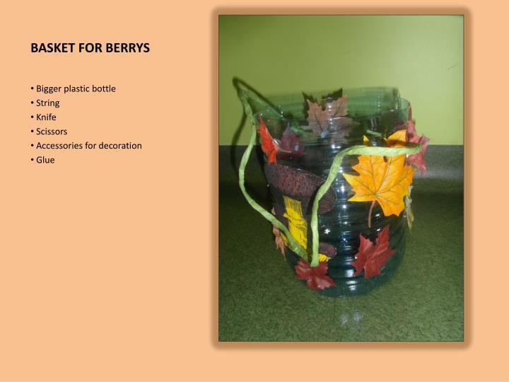 BASKET FOR BERRYS