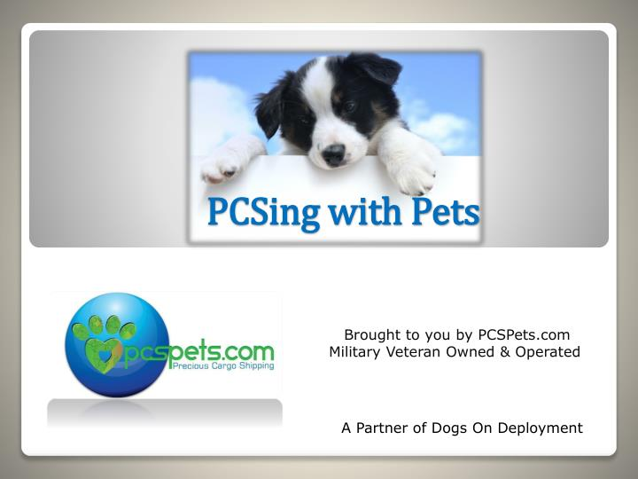 pcsing with pets n.