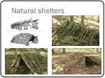 natural shelters1