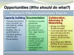opportunities who should do what1