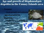 age and growth of stephanolepis hispidus in the canary islands area