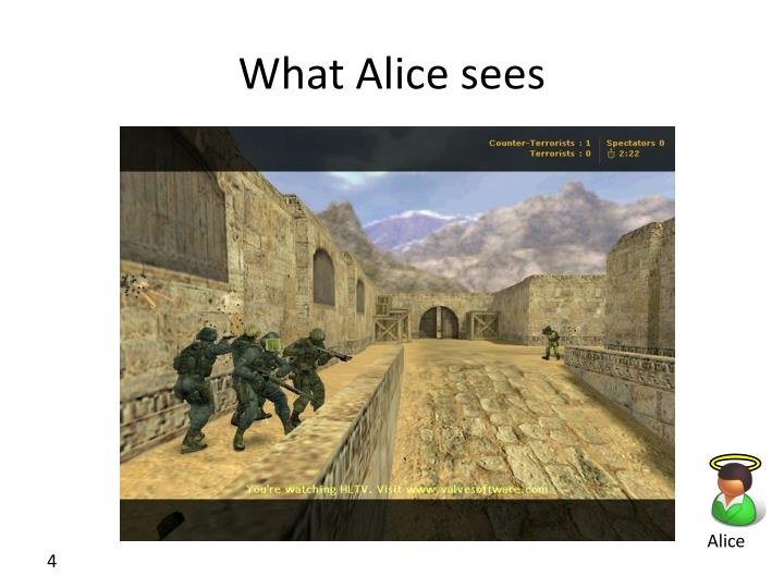 What Alice sees